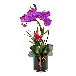 Artificial Flowers -Orchid and Bromeliad in Glossy Black Cylinder Arrangement 50