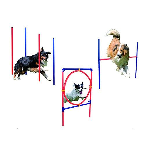 Hundetrainingsset, Agility Set, Hundesport, Hürdenparcours | Farbe: rot, blau | Slalom Stangen und Ringhürde