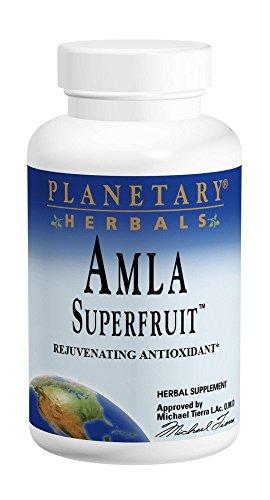 PLANETARY HERBALS Amla Super Fruit Rejuvenating Antioxidant Supplement, 240 Count