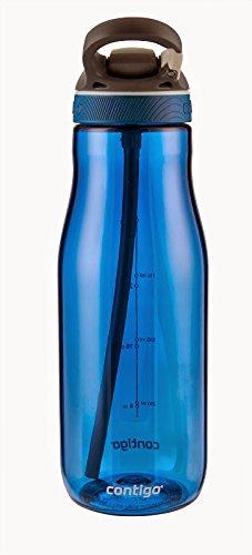 Contigo Autospout Ashland Water Bottle, 32oz , Monaco