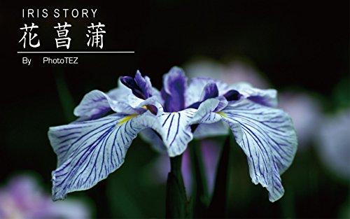 魅惑の花菖蒲