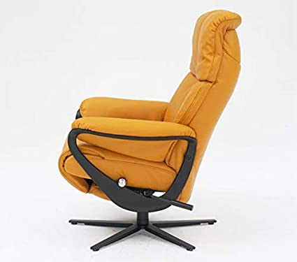 Cool Amazon Com Himolla Africa 8510 16S Zerostress Integrated Caraccident5 Cool Chair Designs And Ideas Caraccident5Info