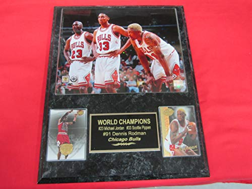 Michael Jordan Scottie Pippen Dennis Rodman Bulls 2 Card Collector Plaque w/8x10 Photo