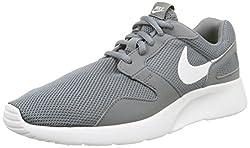Nike Mens Kaishi Running Sneaker Cool Greywhite 12