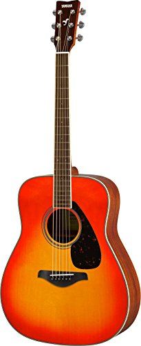 fg820 solid acoustic