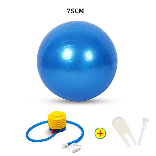Sports Yoga Balls Bola Pilates Fitness Ball Gym Balance Fitball Exercise Pilates Workout Massage Ball with Pump 55Cm 65Cm 75Cm,75Cm Blue