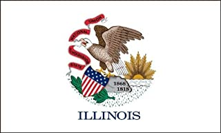 product image for Illinois Flag 2ft x 3ft Nylon - Outdoor