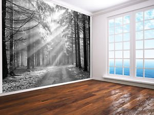 Forest Nature Landscape Photo Wallpaper Wall Mural Black And White