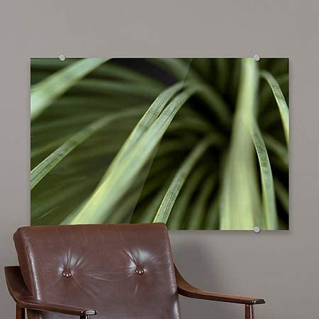 27x18 CGSignLab Circle CapturePhoto Nature Hanging Out Premium Acrylic Sign