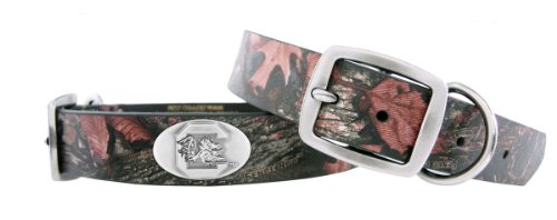 Zep-Pro South Carolina Fighting Gamecocks Camo Leather Concho Dog Collar, Medium, My Pet Supplies