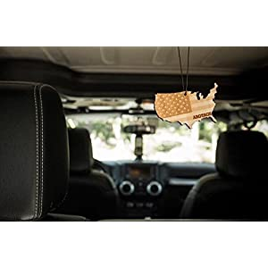 Arotags Sunny Citrus Reusable Air Freshener and Car Diffuser, Last 365+ Days, Made in America