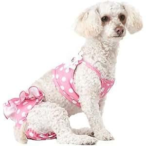 Amazon.com : Petco Smoochie Pooch Pink Polka Dot & Flower