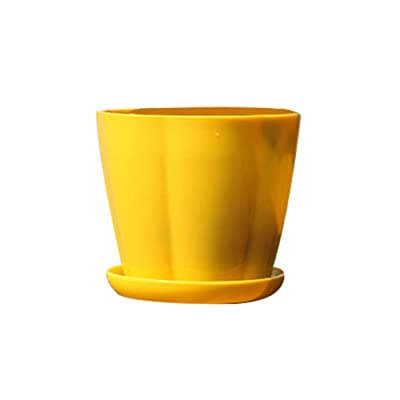Garden Succulent Plant Ceramic Pots, Pumpkin Shape Plastic Imitation Porcelain Flower Pot Succulent Garden Planter - Yellow M : Industrial & Scientific