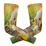 Arm Sleeves Golden Retriever Pictures and Cats Man Baseball Long Cooling Sleeves Sun UV Compression Arm Covers