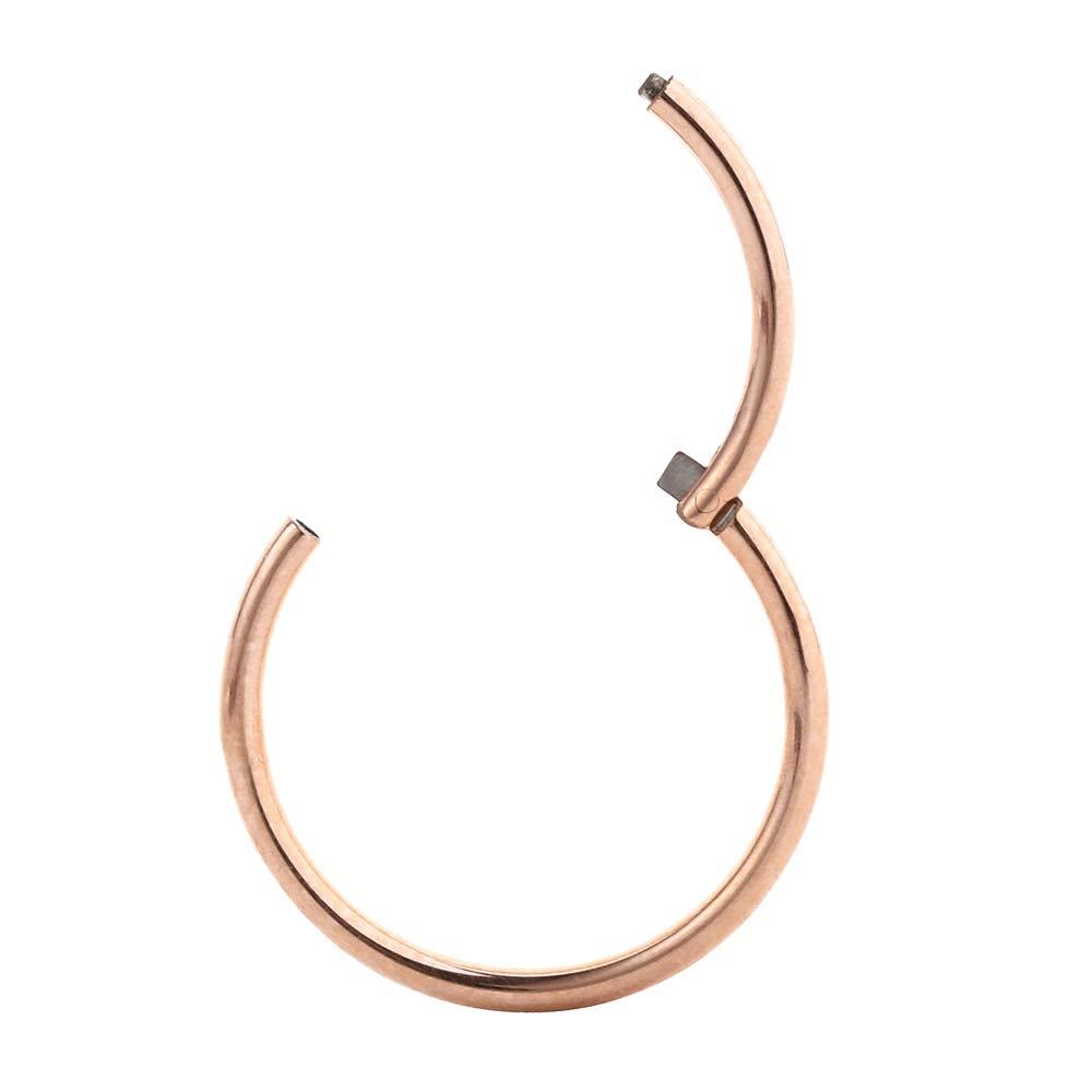 416bac3bfe33c 14 Gauge Earrings Helix Earring Tragus Earrings Daith Earrings Rose Gold  Nose Ring Hoop 14g Nose Rings Cartilage Earring Rook Earrings Nose Piercing  ...