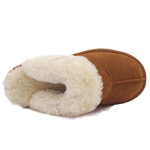 Chestnt Slipper Eve Sheepskin Signature Women's KOS Scuff qOAYXA