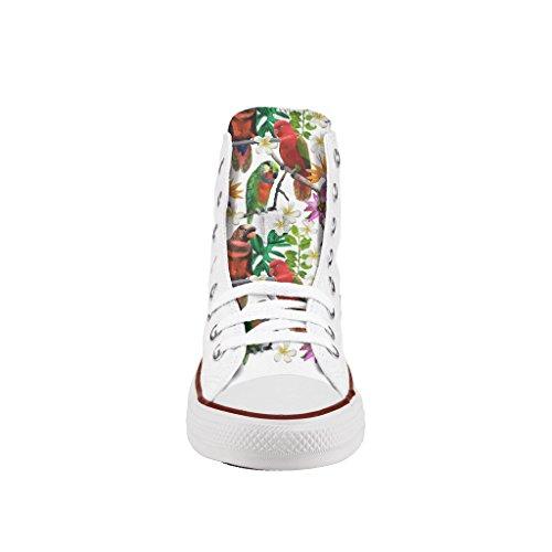 Converse zapatos impresos Parrots Personalizados artesanía de e wCqZwS