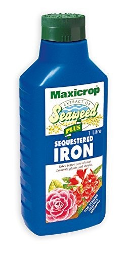 Maxicrop 4 X 140251 1 Litre Seaweed Plus Sequestered Iron