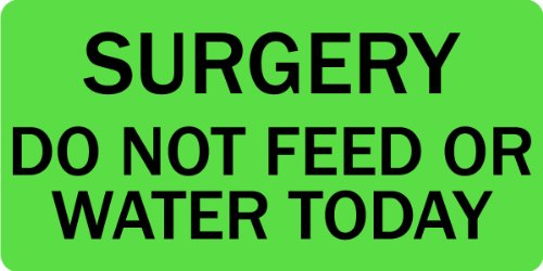 Surgery Do Not Feed or Water Today - Veterinary Label / Stickers, 500 labels per roll, 1 roll per package