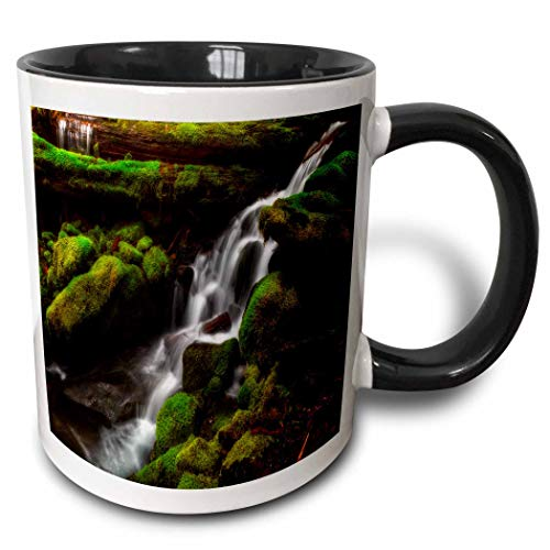 (3dRose Mike Swindle Photography - Landscapes - Creek flowing down over moss covered rocks - 11oz Two-Tone Black Mug (mug_307822_4))