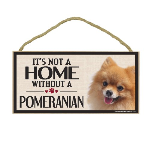 Imagine This Wood Sign for Pomeranian Dog (Tigers Hanging Sign)
