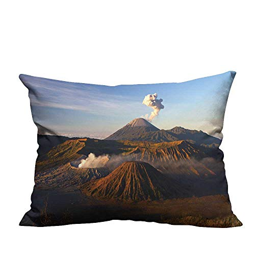 YouXianHome Pillowcase with Zipper vol oe bromo National Park Java Indonesia Ultra Soft & Hypoallergenic (Double-Sided Printing) 19.5x26 inch