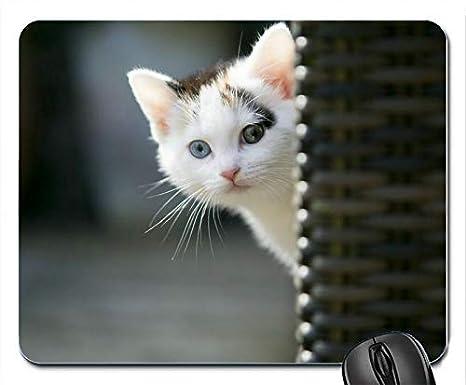 beeb0d317a187 Amazon.com : Cats Glance Animals Mouse Pad Mats Mousepad Hot Gift ...