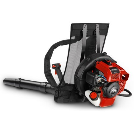 Snapper Inc Backpack Blower with Cruise Control.