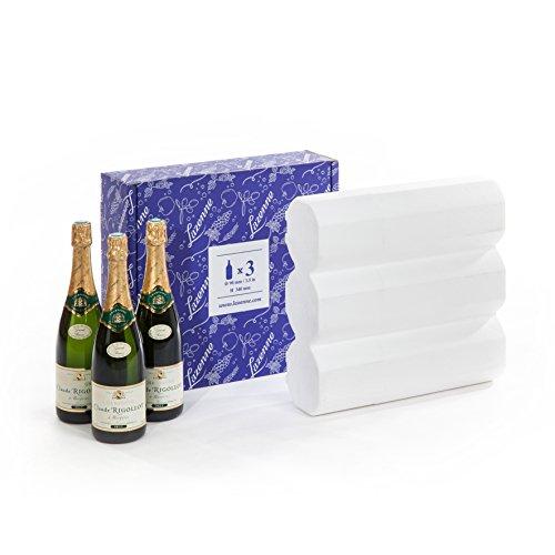 LAZENNE BAGAGE bouteilles Carton amp; VIN et 12 Champagne Bourgogne 3 A POUR 15 type pour SECUR Bordeaux BOUTEILLES type v0rqvRfHwx