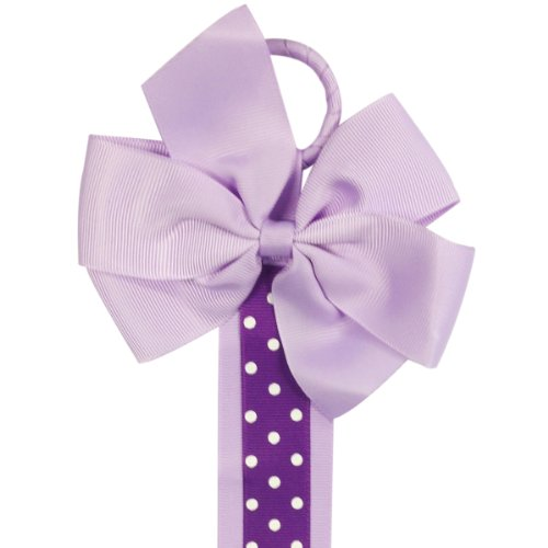 Allydrew Hair Bows and Hair Clips Organizer, Purple Polka Dots