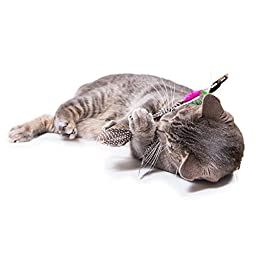 Easyology Pets KittyStick Cat Toy - Best For Playful Interactive FUN - 100% Percent Pet Friendly Kitten Toy with Feather Teaser