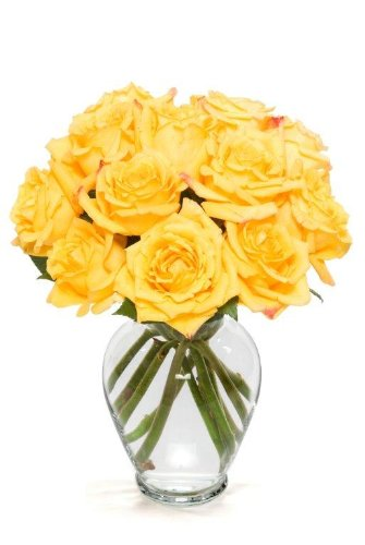 Benchmark Bouquets Dozen Yellow Roses, With (Deliver Flowers)