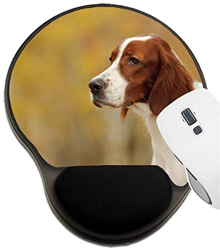 MSD Mousepad Wrist Rest Protected Mouse Pads, Mat with Wrist Support, Image ID: 27152777 Portrait of a Irish red and White Setter Horizontal (Irish Red And White Setter For Sale)