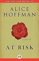 At Risk: A Novel