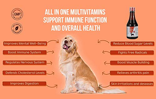 Medilogy Biotech Immunomed 200 ml Dog Supplement for Growth Strength and Immunity Booster