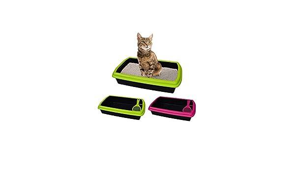 TradeShopTraesio - Arenero de plástico abierto con pala para gatos: Amazon.es: Productos para mascotas