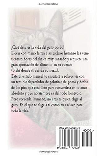 Gato Gordo. Instrucciones de uso (Spanish Edition): Benedetta Alciato, Gisela Fernández: 9781507173923: Amazon.com: Books