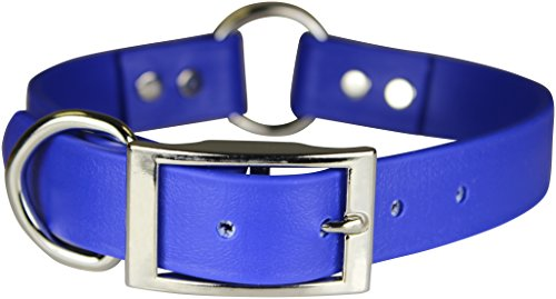 OmniPet Zeta Ring in Center with Dee Dog Collar, 3/4 x 16, Blue