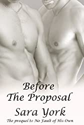 Before The Proposal (Ryan's Love Story Book 1) (English Edition)