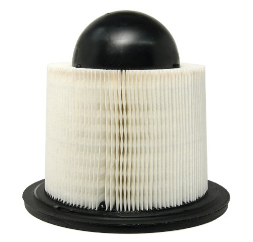 ACDelco A1517C Professional Air Filter