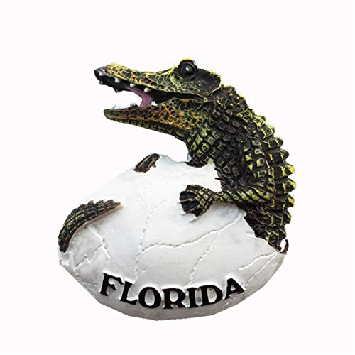- Florida Crocodile America USA Fridge Magnet 3D Resin Handmade Craft Tourist Travel City Souvenir Collection Letter Refrigerator Sticker