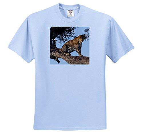 Danita Delimont - Jaguars - Africa, Kenya, Masai Mara National Reserve, African Leopard. - T-Shirts - Light Blue Infant Lap-Shoulder Tee (24M) (TS_276462_77) by 3dRose