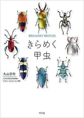 第3位『きらめく甲虫』