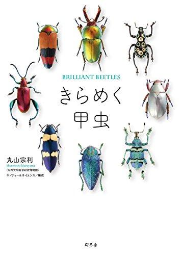 昆虫研究者に囲われた、セクシーすぎる愛人たちの図鑑『きらめく甲虫』
