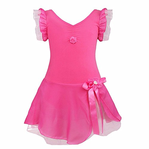 FEESHOW Girls' Gymnastic Ballet Leotard Dance Dress Tutu Skirt Princess Costume Rose (Ballet Dance Costumes)