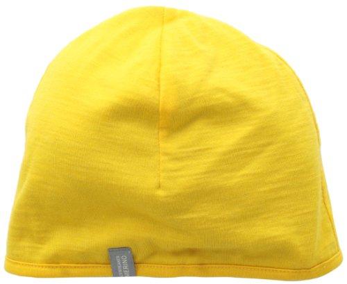 b7913dbfd41 Icebreaker Men s Pocket 200 Hat