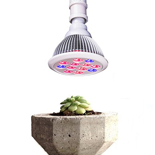 CO-Z LED Plant Grow Light for Indoor Plant, 3 Wavelengths (12W, Pack of 1pcs)