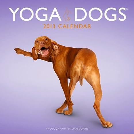 Amazon.com: Yoga Dogs 2013 calendario de pared 12