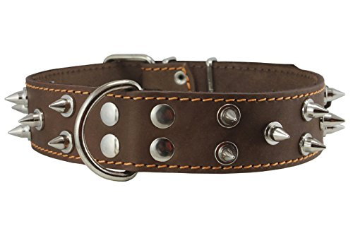 Dogs My Love Real Leather Brown Spiked Dog Collar Spikes, 1.6