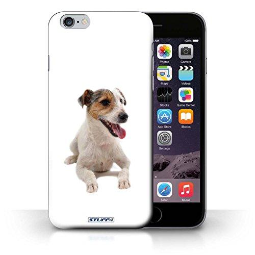 Kobalt® Imprimé Etui / Coque pour iPhone 6+/Plus 5.5 / Jack Russell Terrier conception / Série Chiens